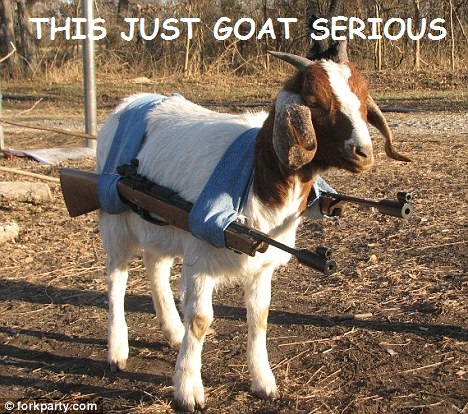 goat with guns.jpg